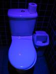 Blue toiler