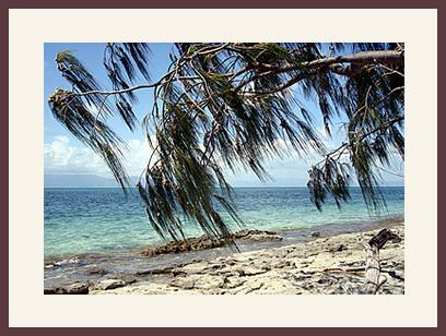 Green Island off Australia's great barrier reef