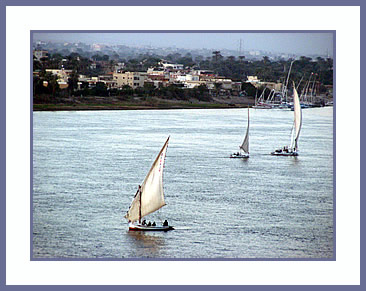Sailing feluccas on the Nile