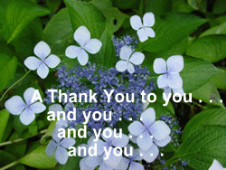 A picture of blue flowers with the words A Thank You to you and you and . . .