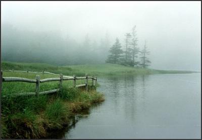 04 - fog-601 x 419